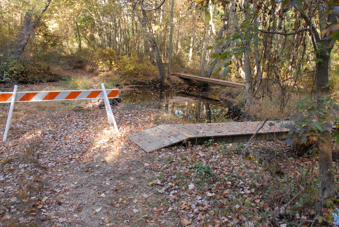 woods, trail, bridge, barrier, water, river, trees, leaves, ground cover