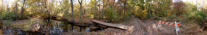 panoramic, barrier, bridge, water, river, woods, ground cover
