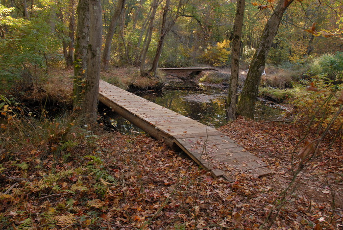 bridge, woods, trees, ground cover, water, river