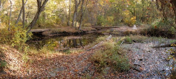 panoramicbridge, river, water, woods, trees