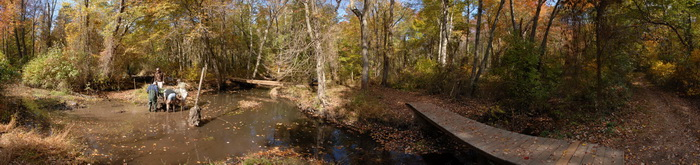 bridge, panoramic, river, trail maintenance, trees, water, woods, ground cover