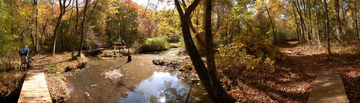 panoramic, bridge, woods, tree, path, trail, trail maintenance
