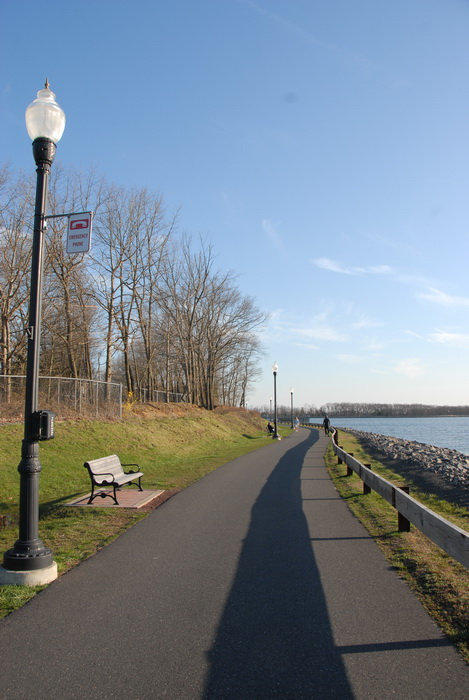 trees, water, railing, path, paved path, grass, lights, light pole, rocks