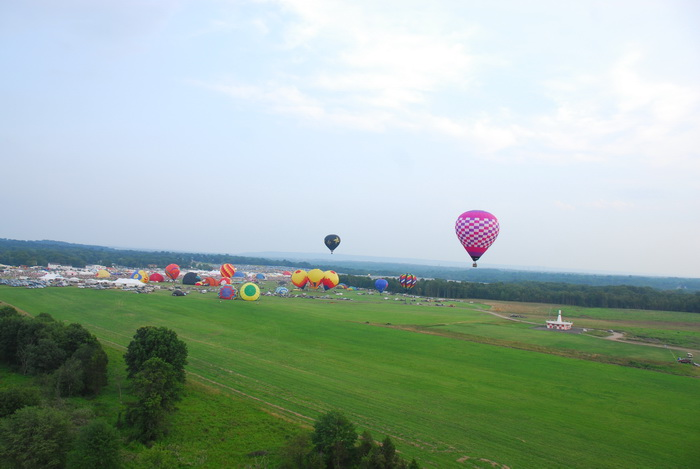 hot air balloons, floating, flight, trees, grass, fields