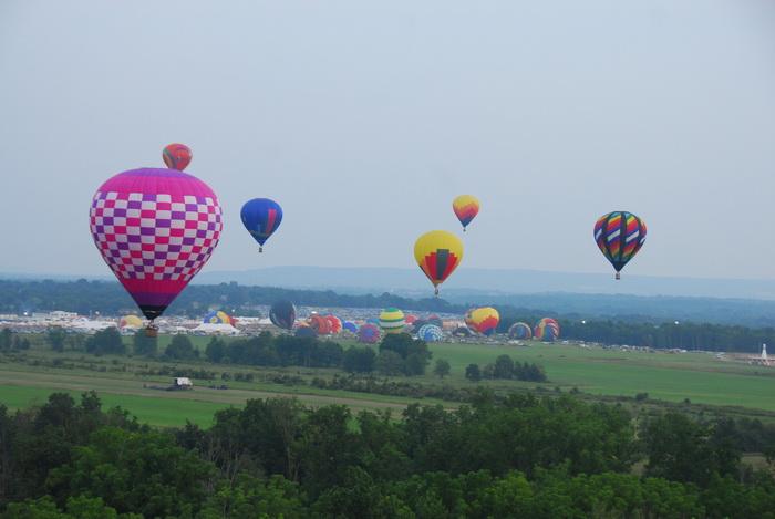 trees, hot air balloon, floating, flight, fieds, mass launch