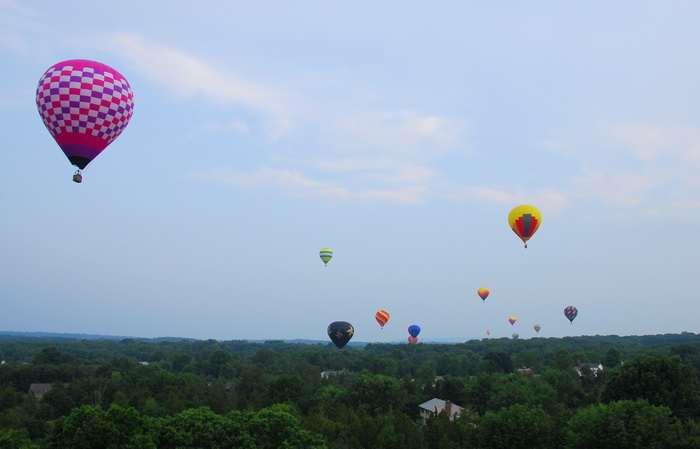 fieds, flight, floating, hot air balloon, mass launch, trees