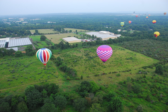 hot air balloon, mass launch, floating, flying, trees, fields, up in the air