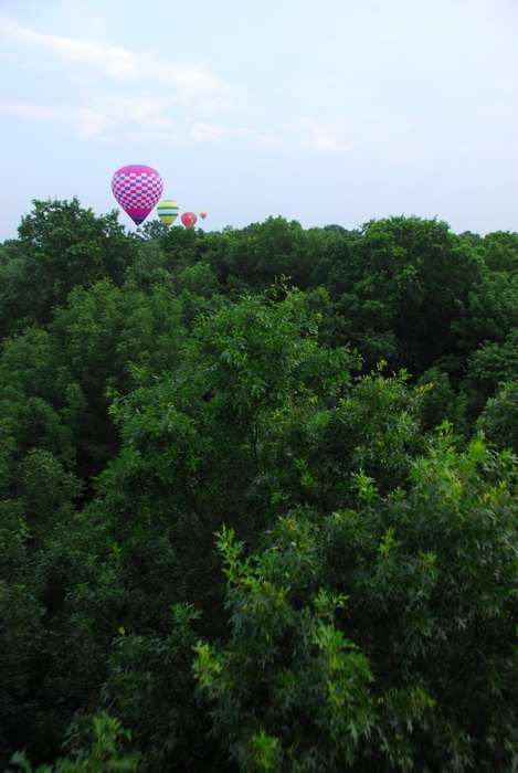 hot air balloon, landing, trees