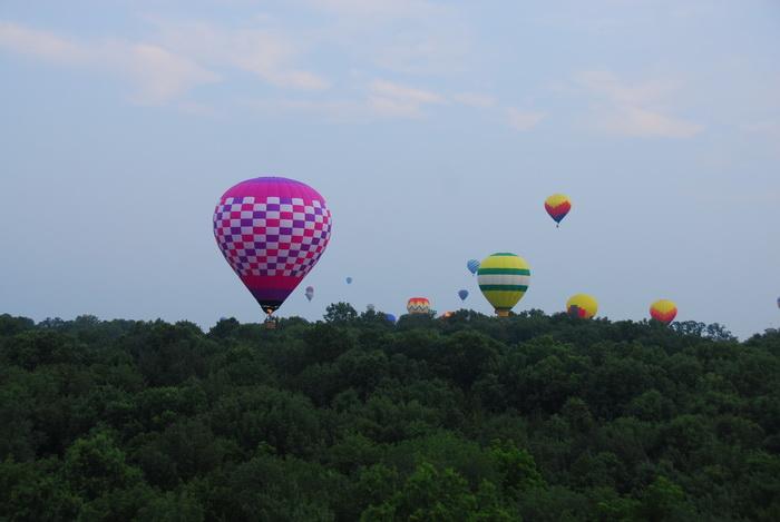 mass launch, hot air balloon, flight, floating, trees