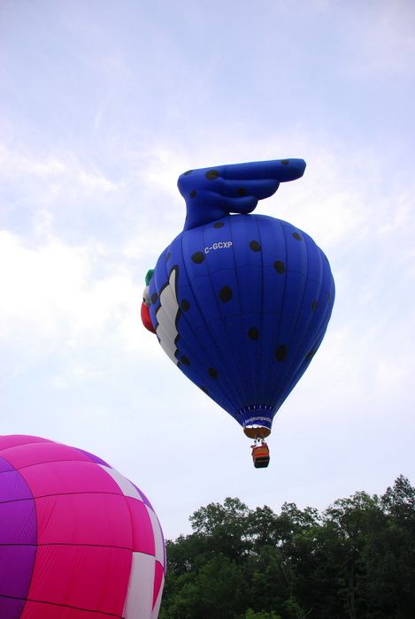 flight, floating, hot air balloon, interesting shape