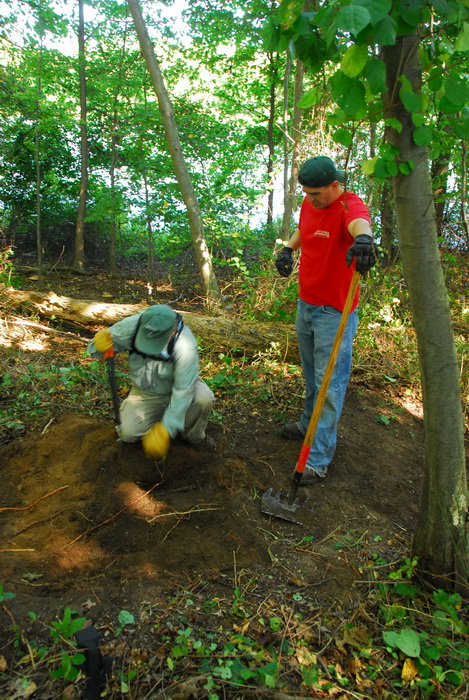 JORBA, S.M.A.R.T., leaves, path, trail day, trail maintenance, trails, trees, woods, undergrowth
