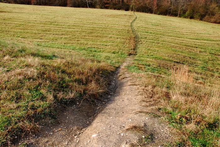 bike path, dirt path, field, grass, trail, erosion