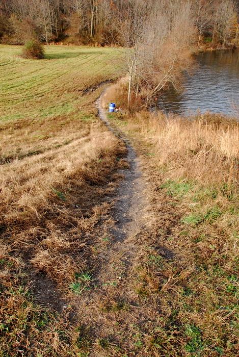 bike path, dirt path, erosion, grass, trail, trees, water