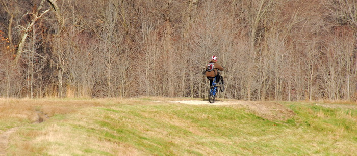 field, grass, trees, mountain bike, wheelie