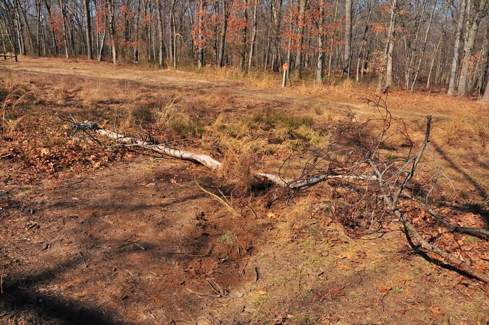 closed trail, trail work, grass, sticks, dirt