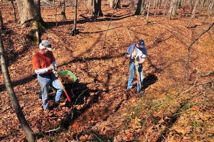 woods, leaves, trees, trail work, tools