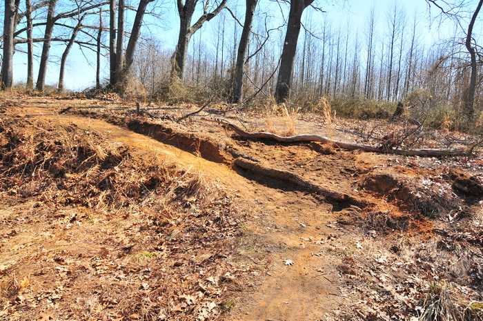 new trail, erosion control, grass, wood, trees