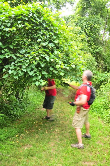 trail work, Core Creek Park - PA