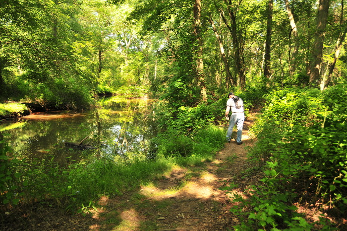 SMART, bushes, dirt, path, person, river, trail, trail maintenance, trees, water