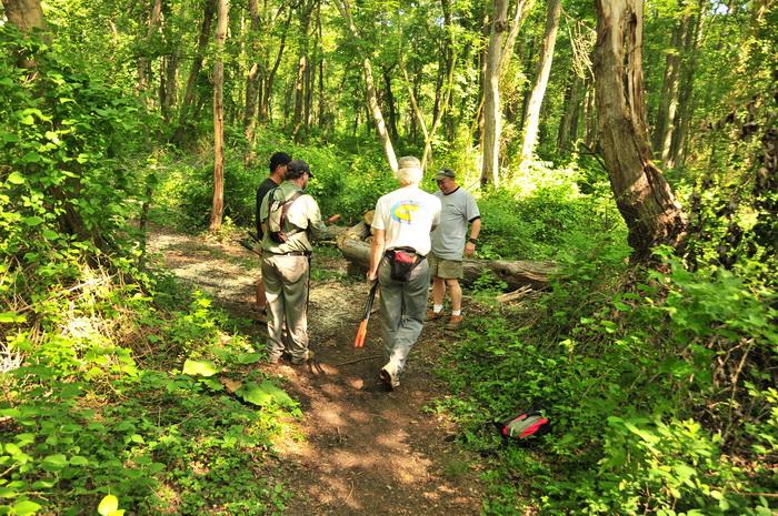 SMART, people, tools, trail maintenance, trees