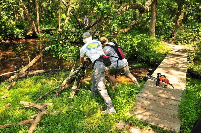 JORBA, SMART, chainsaw, down tree, grass, ground cover, people, stream, water, bridge