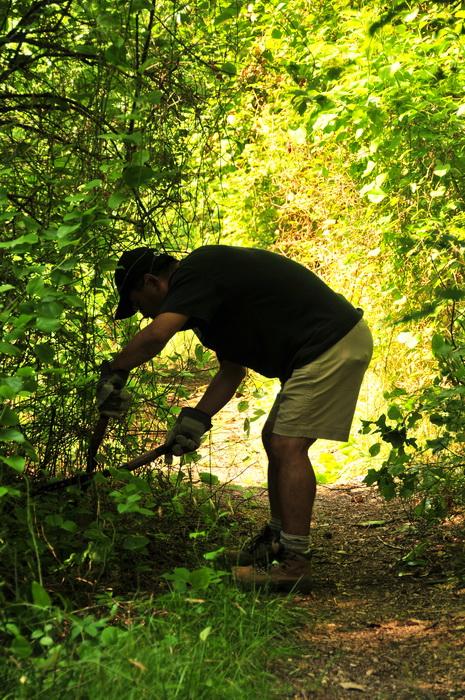 JORBA, SMART, cutting, overgrown, tool, worker