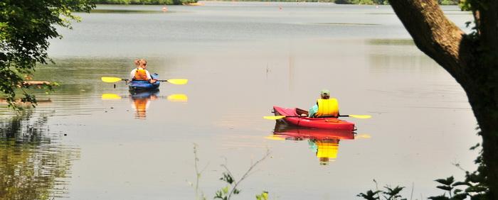 pond, lake, water, reflection, kayak, kayaker, trees