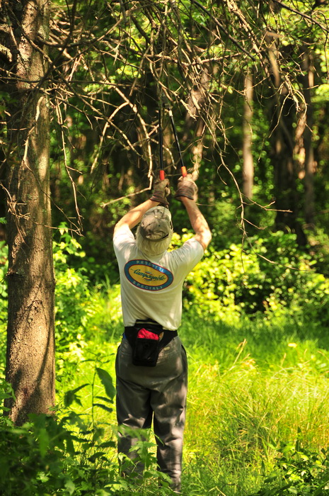 JORBA, SMART, grass, tools, trail maintenance, trees