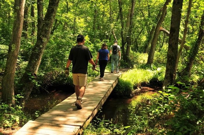 JORBA, SMART, bridge, ground cover, people, stream, trees, water
