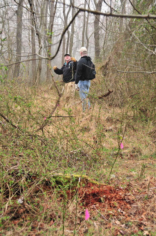 fog, pink flag, trail, vines, woods, Mercer County Park, JORBA Trail Day, March 2012