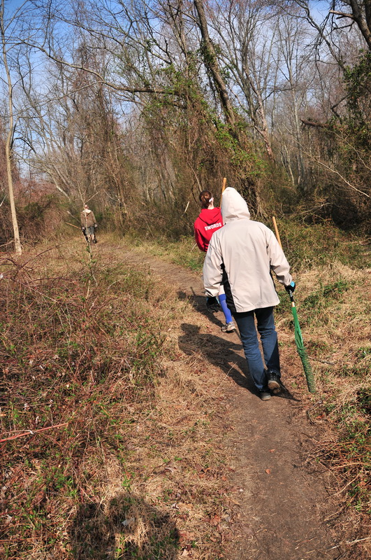 ground cover, people, single track, trail, trail workers, trees, walking, woods, Mercer County Park, JORBA Trail Day, March 2012