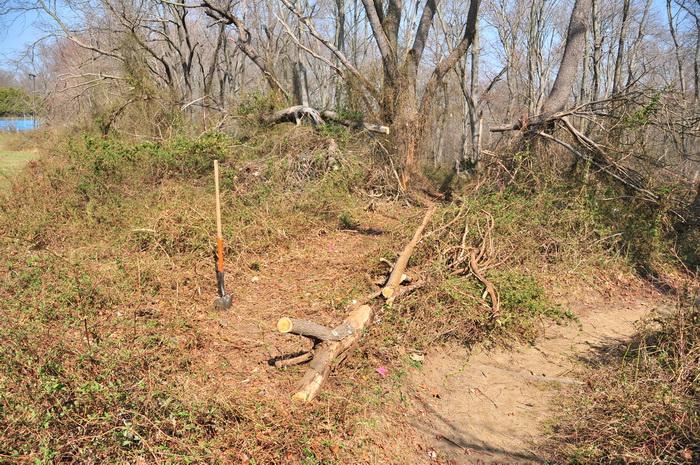 logs, new trail, shovel, single track, trails, Mercer County Park, JORBA Trail Day, March 2012