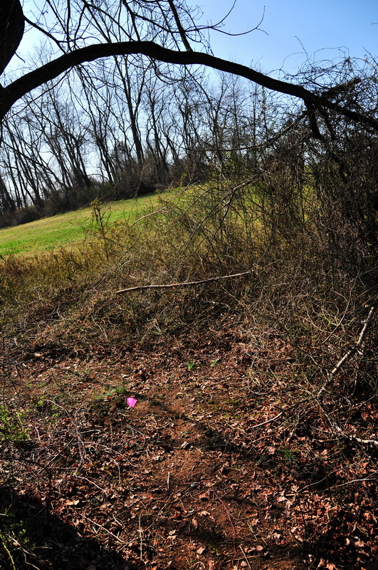 new trail, prickers, tire poppers, trail, Mercer County Park, JORBA Trail Day, March 2012