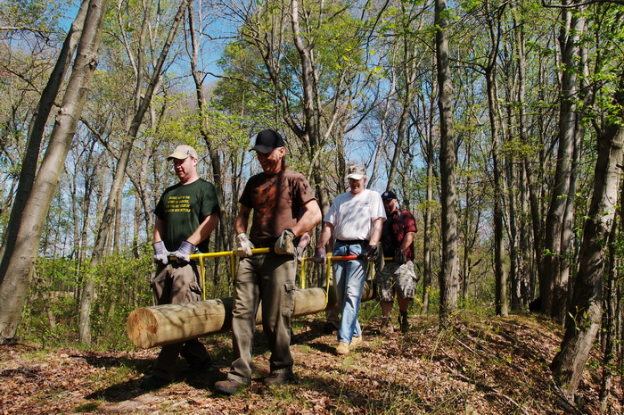 ground cover, trail maintenance, trees, volunteer, woods, log, carry, heavy