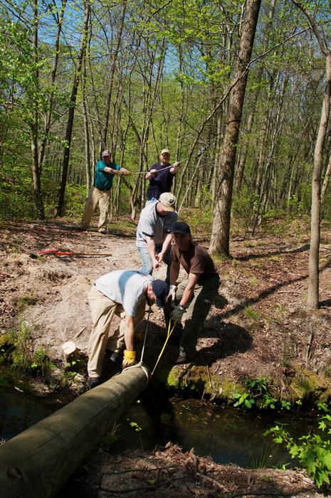 leaves, log, pull, rope, spring, stream, trail maintenance, trees, volunteer, water