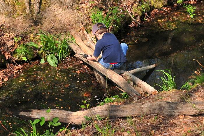 crossing, spring, stream, trail maintenance, trees, volunteer, water