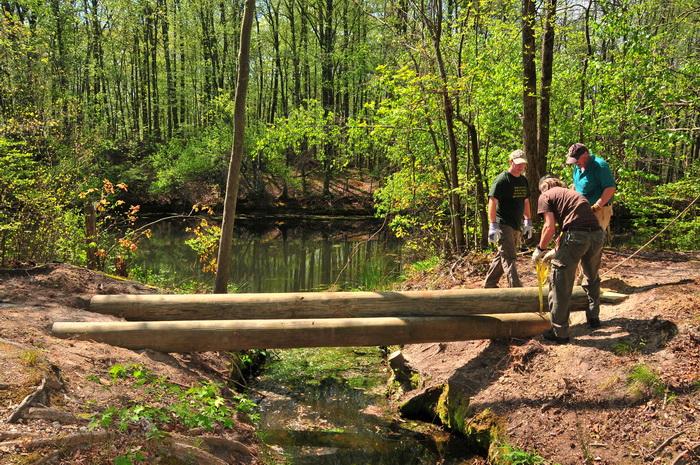 crossing, logs, spring, stream, trail maintenance, trees, volunteer, water, woods