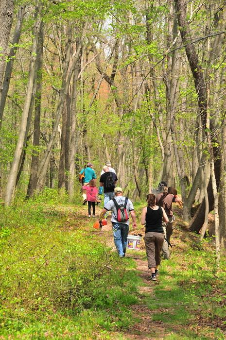 bridge, spring, trail, trail workers, trees, volunteer, walking, woods
